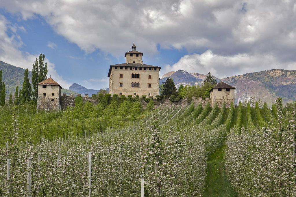 <b>I castelli</b> della Val di Non