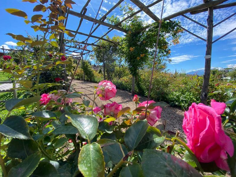 Giardino della Rosa